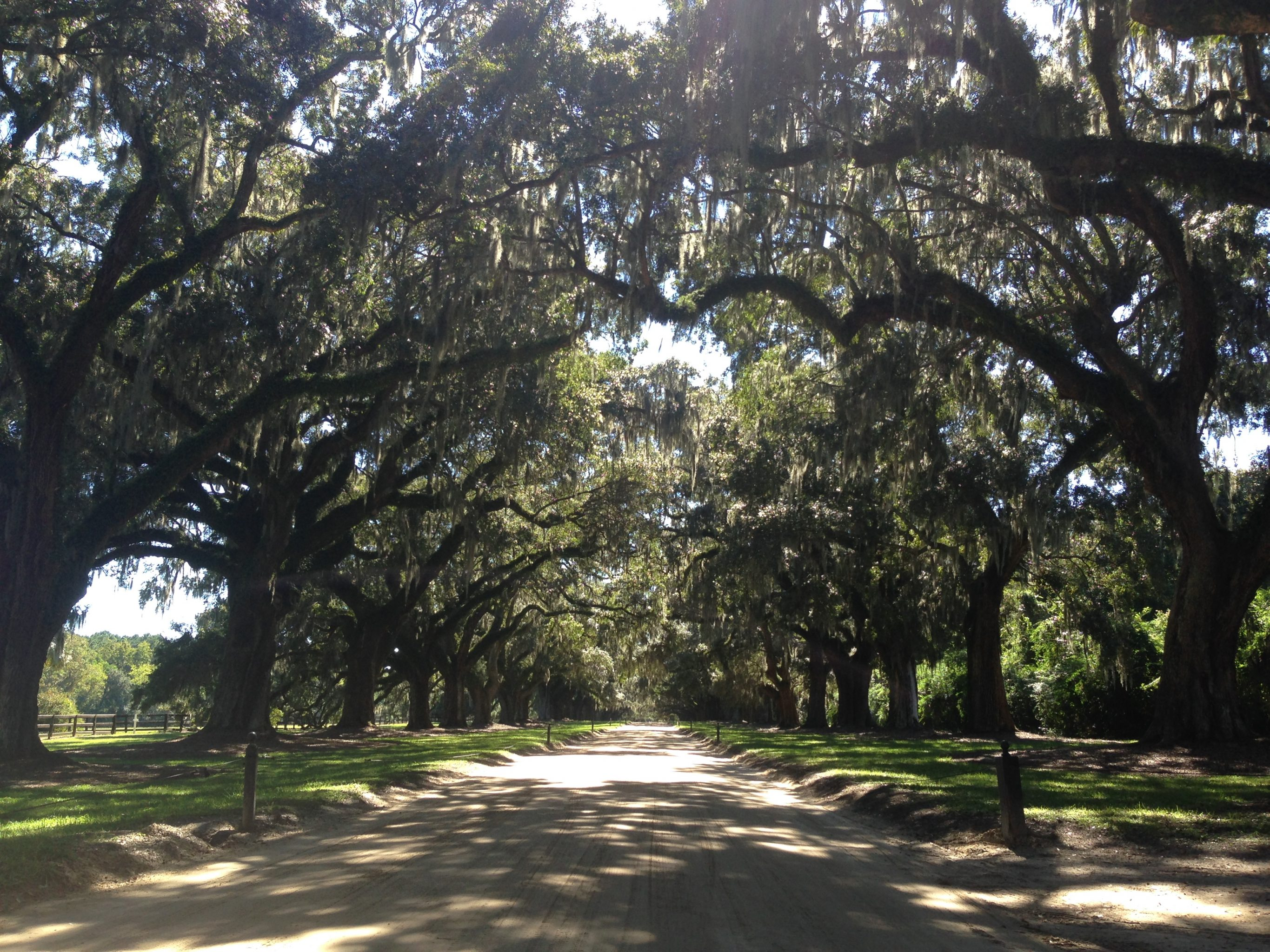 Day 139: South Carolina (Part 3)