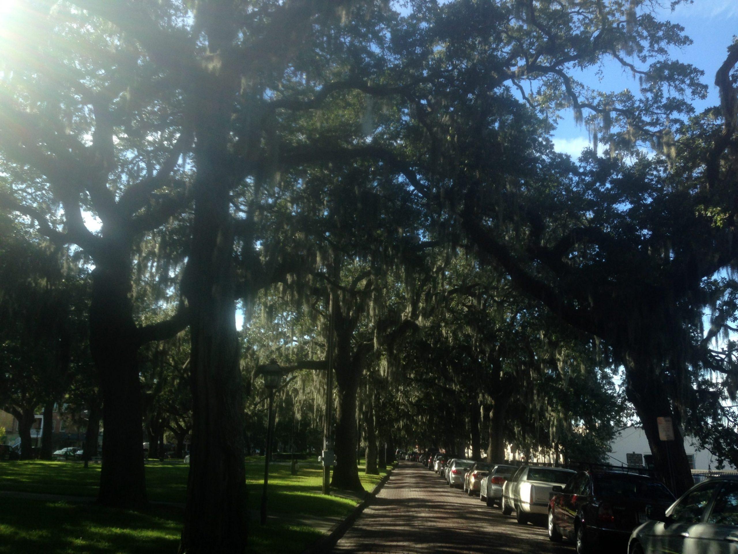 Days 140-141: South Carolina & Georgia