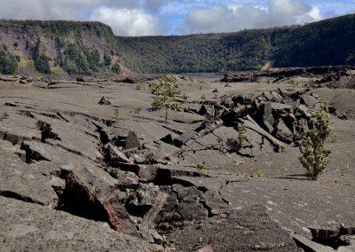 Crater Floor Kīlauea Iki Trail in Hawaii Volcanoes National Park Big Island of Hawaii