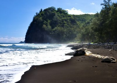 Pololū Valley Black Sand Beach Big Island of Hawaii