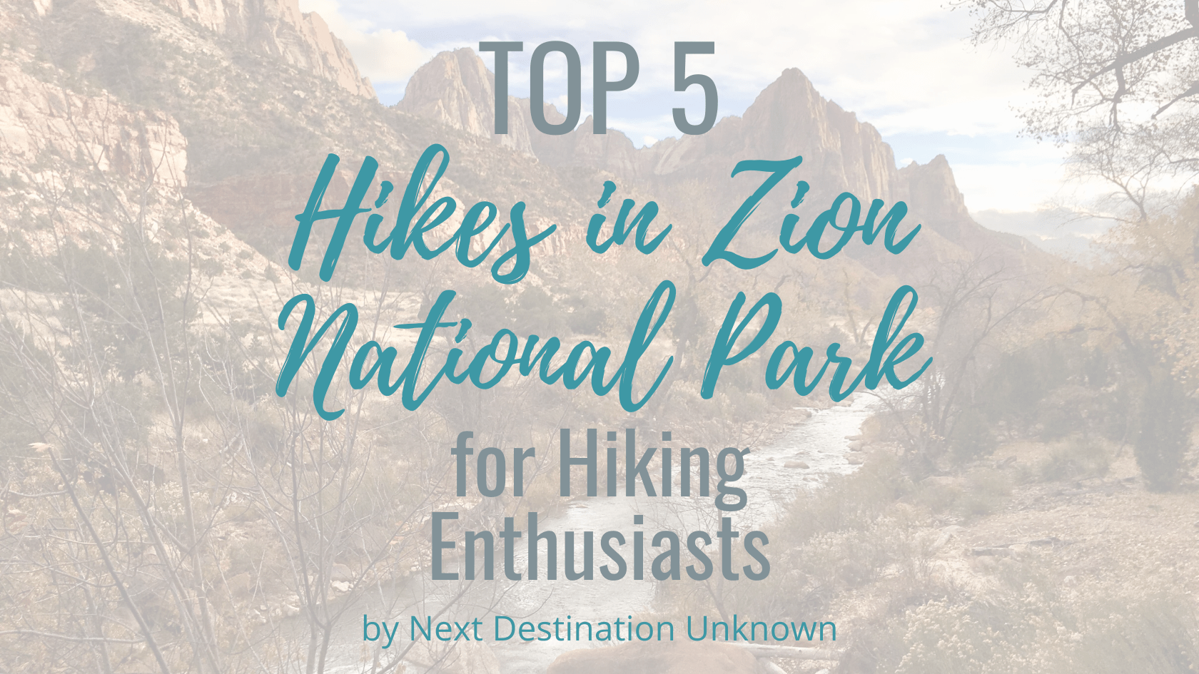 Top 5 Hikes in Zion National Park