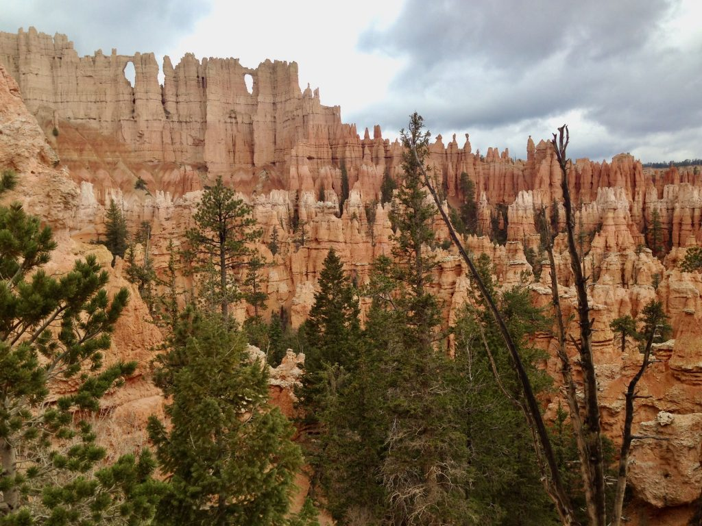 Wall of Windows on Figure 8 Trail in Bryce Canyon National Park Utah