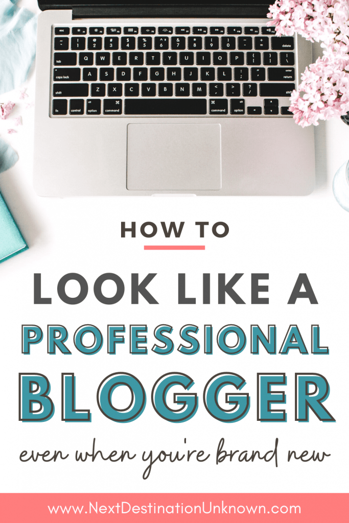 How To Look Like a Professional Blogger Even When You're Brand New to Blogging and a Beginner Blogger