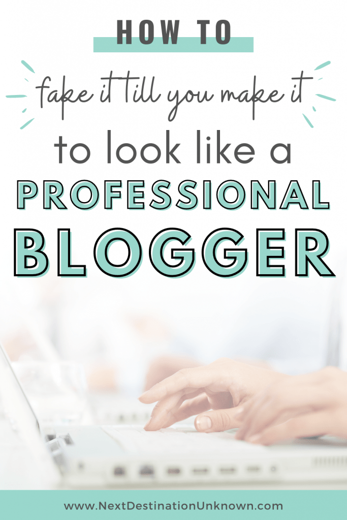 How To Look Like a Professional Blogger Instead of a Beginner Blogger